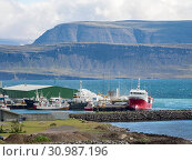 The harbour. Bildudalur at fjord Sudurfjirdir. The remote Westfjords (Vestfirdir) in north west Iceland. Europe, Scandinavia, Iceland. Стоковое фото, фотограф Martin Zwick / age Fotostock / Фотобанк Лори