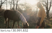 Blond girl in yellow sweater walks with her graced brown-n-white horse in the wood and feeds him with hay slow motion. Стоковое видео, видеограф Denis Mishchenko / Фотобанк Лори