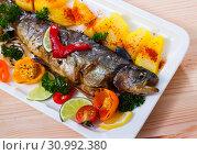 Купить «Grilled whole trout with vegetable garnish», фото № 30992380, снято 21 сентября 2019 г. (c) Яков Филимонов / Фотобанк Лори