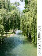Английский сад (нем. Englischer Garten) или Английский парк. Мюнхен. Германия (2019 год). Редакционное фото, фотограф E. O. / Фотобанк Лори