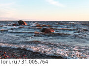 Купить «Baltic sea coastal landscape», фото № 31005764, снято 31 мая 2019 г. (c) EugeneSergeev / Фотобанк Лори