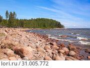 Купить «Baltic sea coast at summer day», фото № 31005772, снято 1 июня 2019 г. (c) EugeneSergeev / Фотобанк Лори