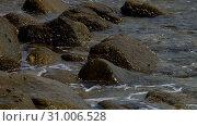 Купить «Ocean shore waves.», видеоролик № 31006528, снято 25 мая 2019 г. (c) Игорь Жоров / Фотобанк Лори