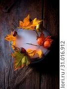 Купить «Autumn leaves in the mist», фото № 31016912, снято 18 июля 2019 г. (c) easy Fotostock / Фотобанк Лори