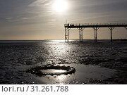 Купить «Low tide warm sunset, man stood on old english victorian pier with tractor tyre in foreground», фото № 31261788, снято 25 октября 2015 г. (c) easy Fotostock / Фотобанк Лори