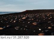 Купить «The rocky black sand beach of Sólheimasandur in Iceland», фото № 31287920, снято 25 декабря 2017 г. (c) easy Fotostock / Фотобанк Лори