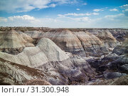 Купить «Scenic view from the Painted Desert Badlands of Petrified Forest National Park», фото № 31300948, снято 6 мая 2017 г. (c) easy Fotostock / Фотобанк Лори