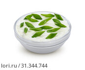 Купить «Sour cream and green onion isolated on white background with clipping path», фото № 31344744, снято 10 января 2018 г. (c) easy Fotostock / Фотобанк Лори