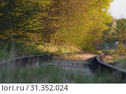 Купить «Disused railway tracks in Maisach in Bavaria», фото № 31352024, снято 23 июля 2019 г. (c) easy Fotostock / Фотобанк Лори