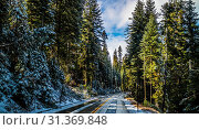 Купить «Road trip to the national park of Yosemite National Park in California», фото № 31369848, снято 20 октября 2017 г. (c) easy Fotostock / Фотобанк Лори