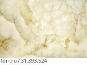 Купить «Onyx wall background. Texture of honey color onyx material», фото № 31393524, снято 15 июня 2018 г. (c) Serg Zastavkin / Фотобанк Лори