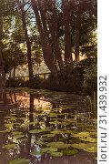 Schwennigke, 1906, Landkreis Leipzig, Groitzsch, An der Schwennigke, Germany (2019 год). Редакционное фото, фотограф Liszt Collection / age Fotostock / Фотобанк Лори