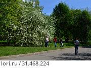 Купить «Отдыхающие люди в Парке Победы в Москве весной», эксклюзивное фото № 31468224, снято 10 мая 2015 г. (c) lana1501 / Фотобанк Лори