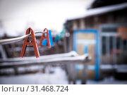 Купить «Бельевые прищепки», фото № 31468724, снято 11 ноября 2016 г. (c) Павел Сапожников / Фотобанк Лори