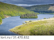 Купить «Peny Garreg reservoir at Elan Valley, Powys, Wales.», фото № 31470832, снято 23 июля 2019 г. (c) age Fotostock / Фотобанк Лори