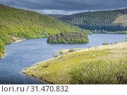 Купить «Peny Garreg reservoir at Elan Valley, Powys, Wales.», фото № 31470832, снято 4 апреля 2020 г. (c) age Fotostock / Фотобанк Лори
