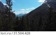 Купить «Beautiful dense green forest in Dolomites, Italy», видеоролик № 31504428, снято 29 марта 2020 г. (c) Константин Шишкин / Фотобанк Лори