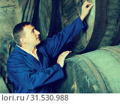 Wine technician expert working with wooden barrels. Стоковое фото, фотограф Яков Филимонов / Фотобанк Лори
