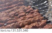 Купить «Свиные шашлыки жарятся на шампурах на мангале», видеоролик № 31531340, снято 15 июля 2019 г. (c) А. А. Пирагис / Фотобанк Лори