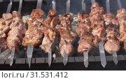 Купить «Шашлыки жарятся на мангале», видеоролик № 31531412, снято 15 июля 2019 г. (c) А. А. Пирагис / Фотобанк Лори