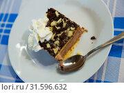 Купить «Slice of soft biscuit cake with cream and chocolate», фото № 31596632, снято 21 января 2020 г. (c) Яков Филимонов / Фотобанк Лори