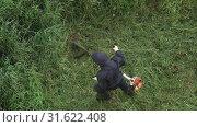 Купить «Мужчина косит траву ручной бензиновой газонокосилкой. Вид сверху», видеоролик № 31622408, снято 17 июля 2019 г. (c) А. А. Пирагис / Фотобанк Лори