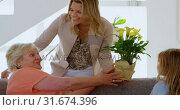 Купить «Woman giving flower bouquet to her mother in living room 4k», видеоролик № 31674396, снято 24 августа 2018 г. (c) Wavebreak Media / Фотобанк Лори