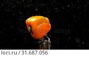 Купить «Bell pepper falling on water against black background 4k», видеоролик № 31687056, снято 18 июля 2018 г. (c) Wavebreak Media / Фотобанк Лори
