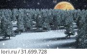 Купить «Winter scenery with red full moon and falling snow», видеоролик № 31699728, снято 2 ноября 2018 г. (c) Wavebreak Media / Фотобанк Лори