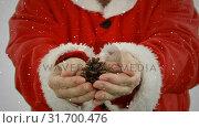 Купить «Video composition with falling snow over santa  holding pine cone in hands», видеоролик № 31700476, снято 2 ноября 2018 г. (c) Wavebreak Media / Фотобанк Лори