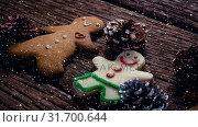 Купить «Falling snow with Christmas cookie decorations», видеоролик № 31700644, снято 2 ноября 2018 г. (c) Wavebreak Media / Фотобанк Лори