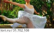 Купить «Female dancer practicing dance in park 4k», видеоролик № 31702108, снято 26 сентября 2018 г. (c) Wavebreak Media / Фотобанк Лори