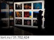 Фотографии фотографа Алекса Вебба (Alex Webb) на итоговой выставке фотографии лаборатории Magnum Live/Lab 2019 в залах музея Архитектуры им. Щусева города Москвы, Россия. Редакционное фото, фотограф Николай Винокуров / Фотобанк Лори