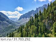 Dark coniferous taiga on mountainside in July. Стоковое фото, фотограф Виктор Никитин / Фотобанк Лори