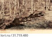 Use of weapons, 2. Königlich Sächsisches Jäger-Bataillon Nr. 13, Betula in Saxony, 1903, Dresden, 2. Königlich Sächsisches Jäger, Batallion Nr. 13, Zielübung, Germany (2019 год). Редакционное фото, фотограф Liszt Collection / age Fotostock / Фотобанк Лори