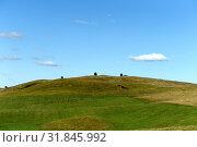 Купить «Западная Сибирь. Предгорья Алтайских гор», фото № 31845992, снято 5 сентября 2018 г. (c) Free Wind / Фотобанк Лори