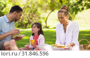 Купить «family eating sandwiches on picnic at summer park», видеоролик № 31846596, снято 21 июля 2019 г. (c) Syda Productions / Фотобанк Лори
