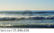 Купить «Waves reaching the sea shore 4k», видеоролик № 31846636, снято 10 сентября 2018 г. (c) Wavebreak Media / Фотобанк Лори