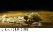 Купить «White rose and petals scattered on the glitter 4k», видеоролик № 31846988, снято 11 октября 2018 г. (c) Wavebreak Media / Фотобанк Лори