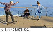 Купить «Side view of young caucasian male skateboarder riding on skateboard at observation point 4k», видеоролик № 31872832, снято 16 октября 2018 г. (c) Wavebreak Media / Фотобанк Лори
