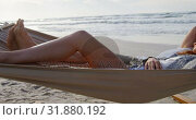 Купить «Couple sleeping on hammock at beach 4k», видеоролик № 31880192, снято 14 ноября 2018 г. (c) Wavebreak Media / Фотобанк Лори
