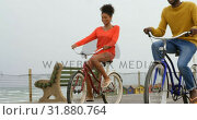 Купить «Front view of black young couple riding bicycle on promenade at beach on a sunny day 4k», видеоролик № 31880764, снято 14 ноября 2018 г. (c) Wavebreak Media / Фотобанк Лори