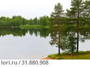 Купить «Northern landscape with forest lake in rainy weather. Ruka, Finland», фото № 31880908, снято 6 июля 2019 г. (c) Валерия Попова / Фотобанк Лори