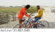 Купить «Side view of young black couple standing with bicycle at beach on a sunny day 4k», видеоролик № 31881040, снято 14 ноября 2018 г. (c) Wavebreak Media / Фотобанк Лори