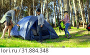 Купить «Friends setting up tent in the forest on a sunny day 4k», видеоролик № 31884348, снято 12 октября 2018 г. (c) Wavebreak Media / Фотобанк Лори