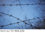 Купить «Rows of barbed wire against a dark blue sky, blurred image», фото № 31904224, снято 25 марта 2019 г. (c) Олег Белов / Фотобанк Лори