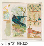 Купить «Whistling Thrush, from the Song Birds of the World series (N42) for Allen & Ginter Cigarettes, 1890, Commercial color lithograph, Sheet: 2 7/8 x 3 1/4...», фото № 31909220, снято 27 апреля 2017 г. (c) age Fotostock / Фотобанк Лори