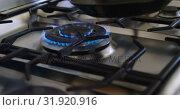 Купить «Man placing pan on gas stove hob 4k», видеоролик № 31920916, снято 28 мая 2018 г. (c) Wavebreak Media / Фотобанк Лори