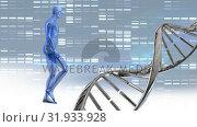 Купить «DNA double helix and digital human», видеоролик № 31933928, снято 27 марта 2019 г. (c) Wavebreak Media / Фотобанк Лори