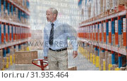 Купить «Man dragging a fork lift inside a warehouse», видеоролик № 31935464, снято 27 марта 2019 г. (c) Wavebreak Media / Фотобанк Лори